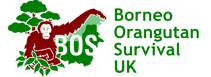 Borneo Orangutan Survival UK