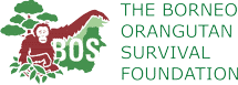 The Borneo Orangutan Survival (BOS) Foundation